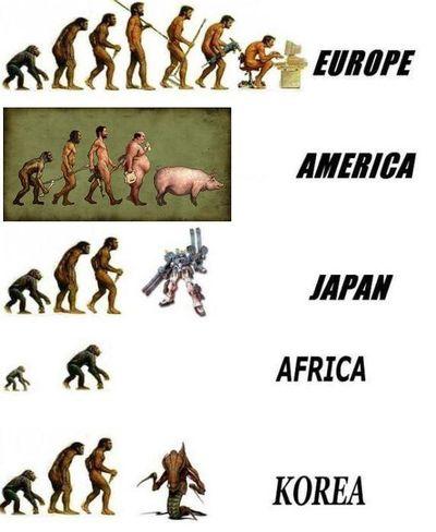 ewolucja.jpg