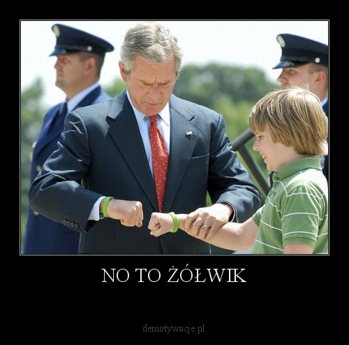 no-to-zolwik.jpg